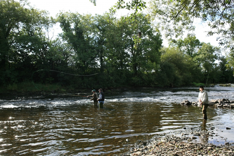 fly fishing tuition