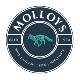 wwwmolloysie